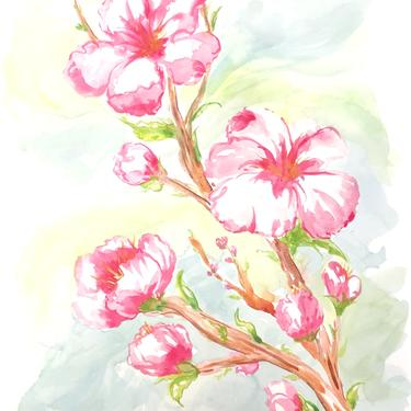 Paint Cherry Blossoms in Watercolor (with Outlines) A Virtual Workshop- April 11