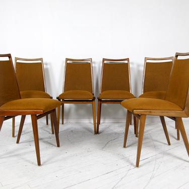 Rare Vintage mcm set of 6 dining chairs by Habeo Germany | Free delivery in NYC and Hudson by OmasaProjects