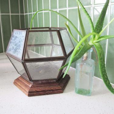 Vintage Glass Terrarium - 70s Metal Glass Paned Plant Terrarium Small - Hexagonal Glass Vase - Air Plant Holder - Plant Lover Gift Boho Home by MILKTEETHS