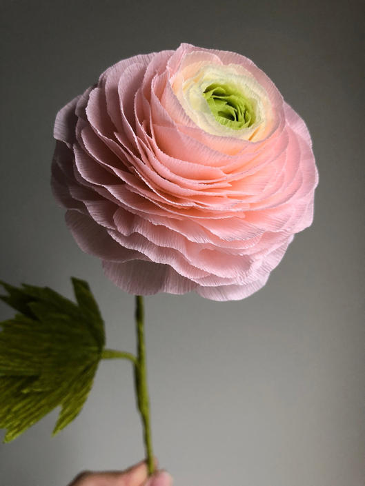 Crepe Paper Ombre Ranunculus -- Paper Flowers for Home Decor or Weddings by ReveryPaperFlora