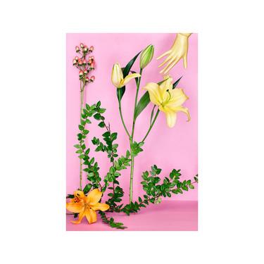 Still Life With Golden Stargazer Lily: Floral Print, Modern Art, Wall Hanging, Decorative Art, Fine Art Photography, Flower, Still Life by DesireePfeifferPhoto