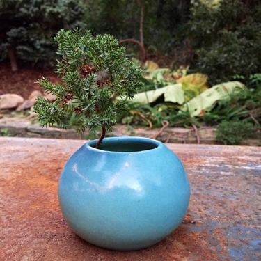 Van Briggle Original Pottery by BrainWashington