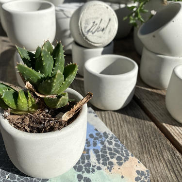 """2"""" Round Concrete Pot (Natural) by MadeByRheal"""