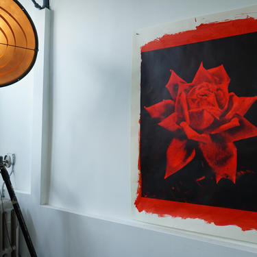 Large Red Rose Acrylic on Drawing Paper (signed)