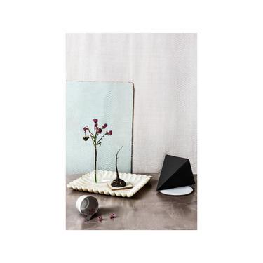 Still Life No. 136: Fine Art Photography, Abstract Art, Still Life, Floral Print, Contemporary Art, Interior Design, Home Decor. by DesireePfeifferPhoto