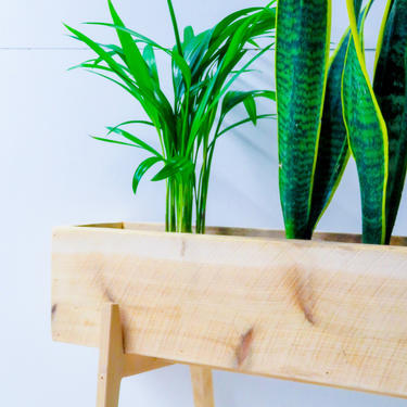 Planter Box with Stand by ModernMadera