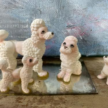 Vintage Poodle Figurines, Family Of 4 Bone China White Poodles, Made In Japan by luckduck