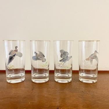 Vintage Mid Century Ned Smith Gamebird Highball Wild Birds Bob-White Sora Snipe Pheasant Gold Rim Glasses, Set of 4, MCM Barware by BlackcurrantPreserve