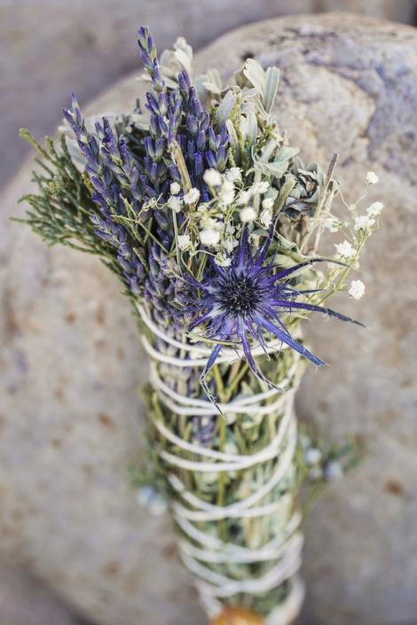 Colossal Deep Clean Juniper Sage Bundle