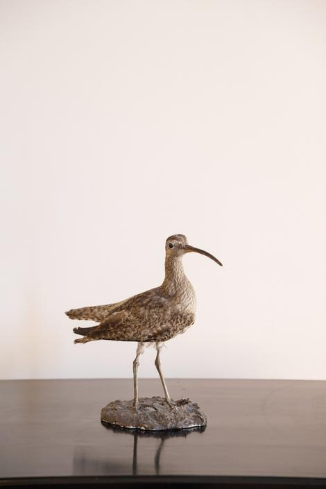Vintage French Sea Bird on stand, Medium