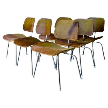 6 Limited Edition Charles Eames for Herman Miller DCM in Tri-Color Hairy Hide