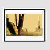 Saguaros in Arizona - Print by MonicaAhanonuDesign
