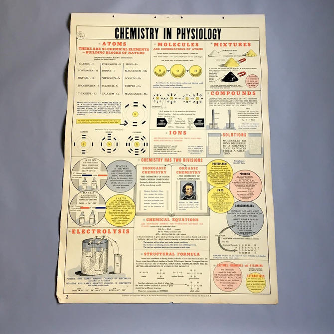 Chemistry in Physiology school health wall chart - W. M. Welch Manufacturing Company - 1946 vintage by NextStageVintage