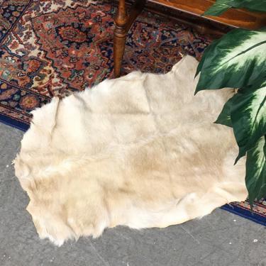 Vintage Fur Pelt 1990s Retro Size 33x22 Bohemian + Genuine + Goatskin + White and Brown + Accent Rug + Animal + Boho Home + Floor Decor by RetrospectVintage215