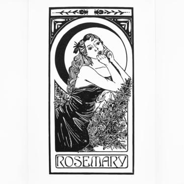Rosemary | Herb Nouveau