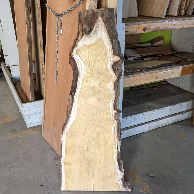 "Treincarnation Live Edge Lumber – Mulberry 8.25-21"" x 47.5"""