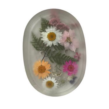 Botanical Soap Dish / Case of 5