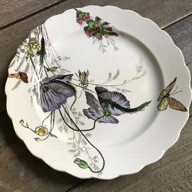 English China Plate, Poppy, Ralph Hammersley, Dated, Glazed, Transferware, Burslem Staffordshire, Floral Design by JansVintageStuff