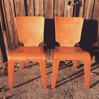 Thaden Jordan molded midcentury plywood dining chairs, have a matching table as well. Look these up, they are rare. #midcentury #vintage #petworth