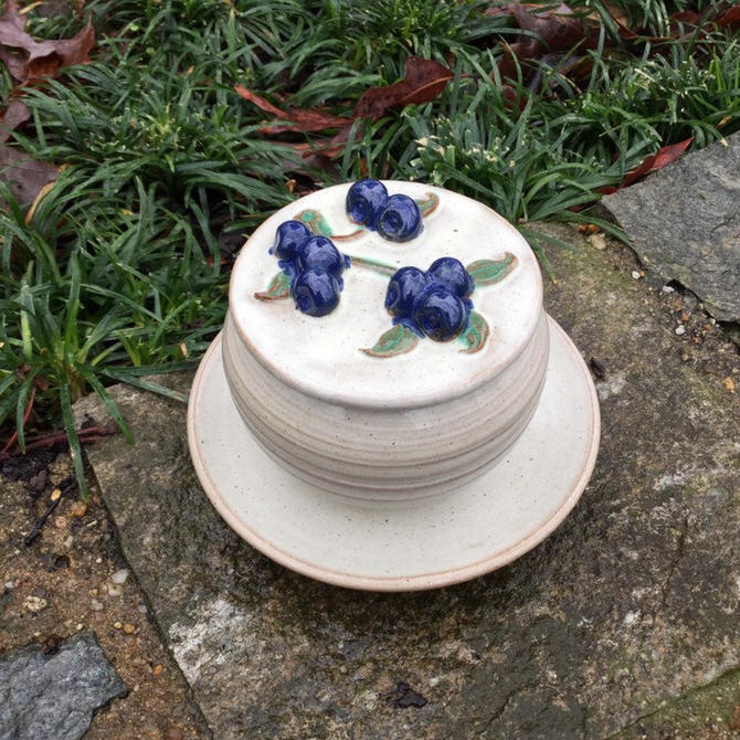 Rowantrees Blue Hill Maine Blueberry Jar Jam by BrainWashington