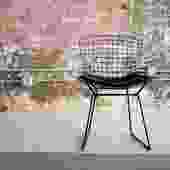 Bertoia Wire Chair with Pad