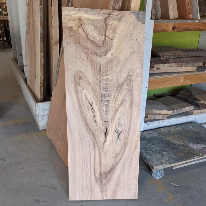 "Treincarnation Live Edge Lumber –Elm 17.5-18"" x 44.75-45.75"" Serial #5201"